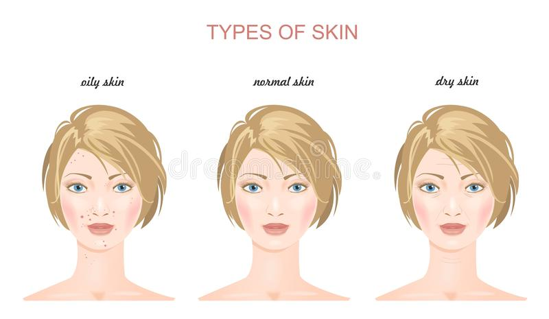Tipos de la piel de la cara Vector fotografía de archivo