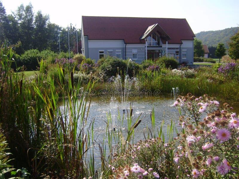 Tipos de lagoas do jardim com fontain imagens de stock