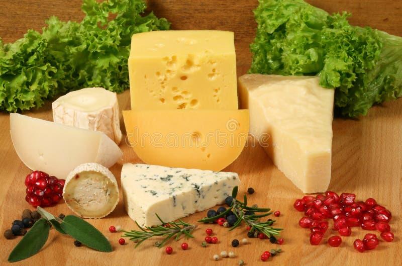 Tipos del queso fotos de archivo