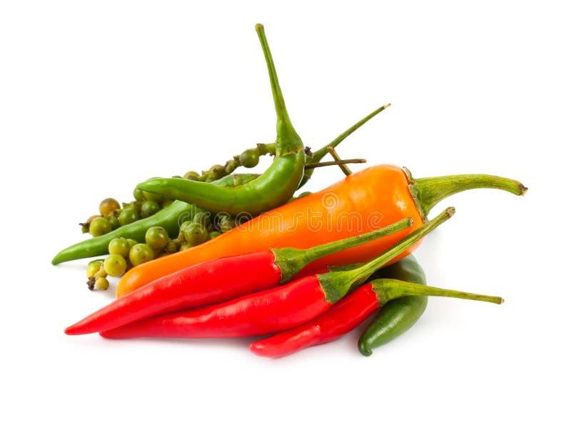 Tipos diferentes da pimenta quente imagem de stock