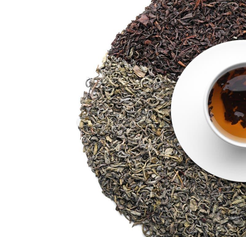 Tipos diferentes das folhas de chá e do copo secos com a bebida quente no fundo branco, vista superior foto de stock