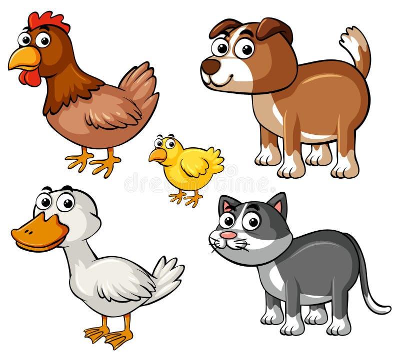 Tipos diferentes de animais de exploração agrícola ilustração royalty free