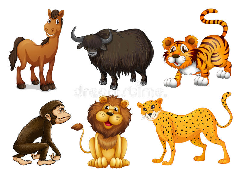 Tipos diferentes de animais quadrúpedes ilustração stock