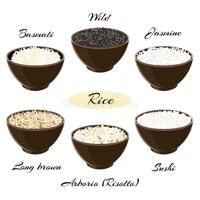 Tipos diferentes de arroz em umas bacias ilustração royalty free