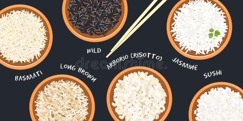 Tipos diferentes de arroz em umas bacias cerâmicas Basmati, selvagem, jasmim, marrom longo, arborio, sushi chopsticks Esteira do  ilustração stock