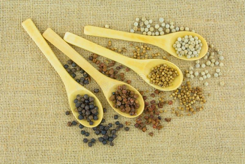 Tipos diferentes de ervas secas na colher de madeira fotos de stock