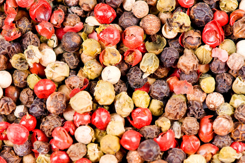 Tipos diferentes de pimenta fotografia de stock
