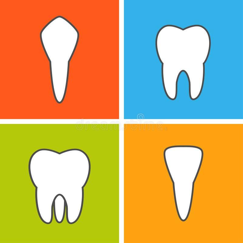 Tipos do dente ilustração stock