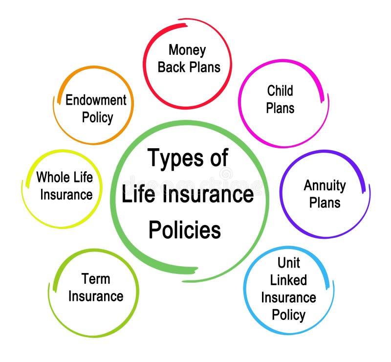 Tipos póliza de seguro de vida stock de ilustración
