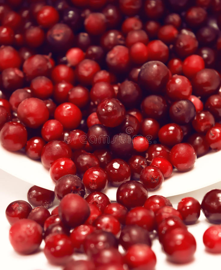 Tipped over bowl full of red lingonberries. Close-up of tipped over bowl with red lingonberries pouring out stock photo