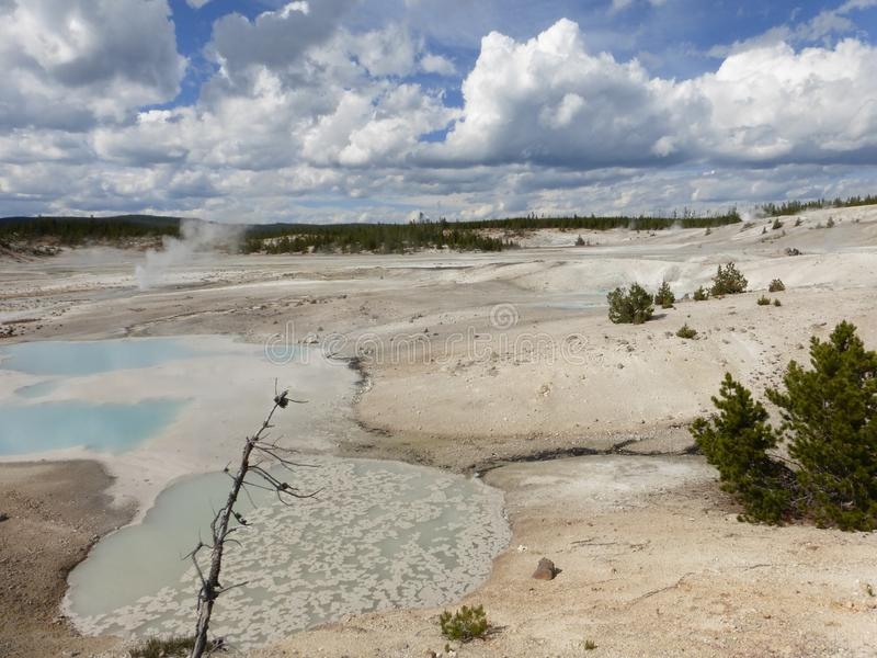 Tips im Yellowstone Nationalpark arkivfoton