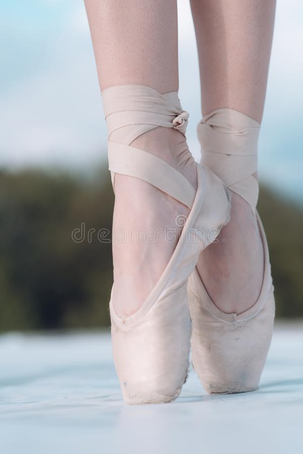 On the tips of the toes. Female feet in pointe shoes. Pointe shoes worn by ballet dancer. Ballerina shoes. Legs in white. Ballet shoes. Ballet slippers. Classic royalty free stock photography