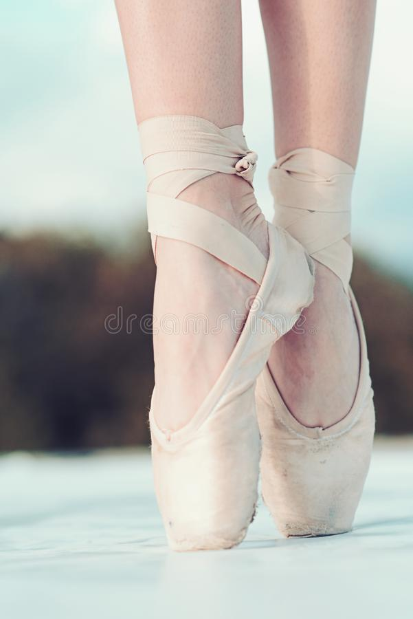 On the tips of the toes. Female feet in pointe shoes. Pointe shoes worn by ballet dancer. Ballerina shoes. Legs in white stock photo