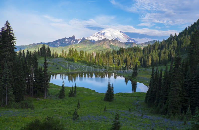 Tipsoo Lake in the Morning royalty free stock photo