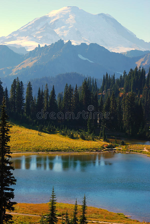 Tipsoo Lake at Mt. Rainier royalty free stock image