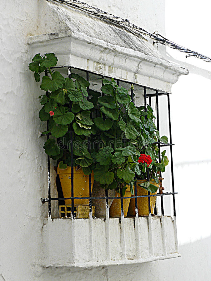 TIPYCAL ANDALUSIAN WINDOW. These type of windows are very often found in the popular architecture in Andalusía stock photo