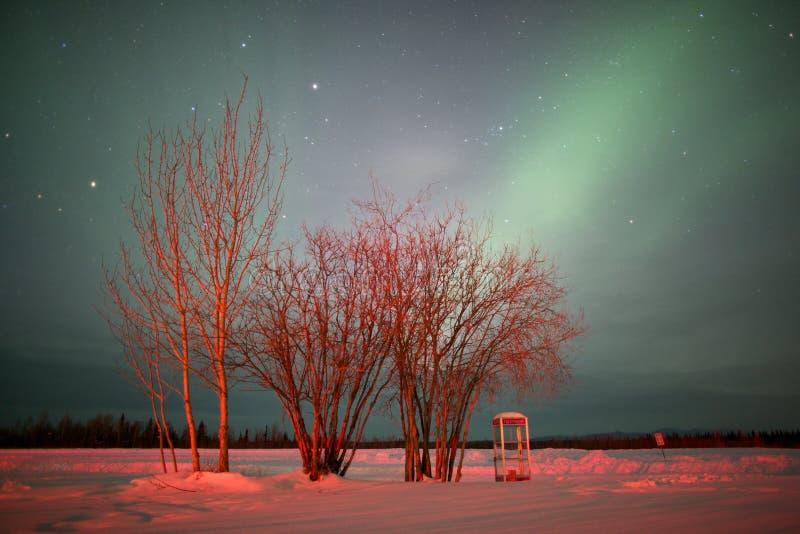 Tiré des lumières nordiques en ciel photographie stock
