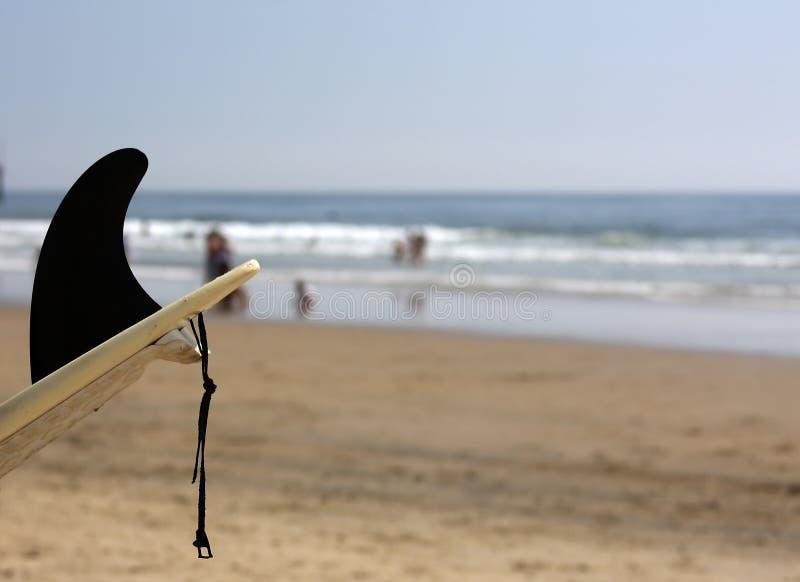 Tiré du panneau de vague déferlante avec l'ailette noire photographie stock libre de droits