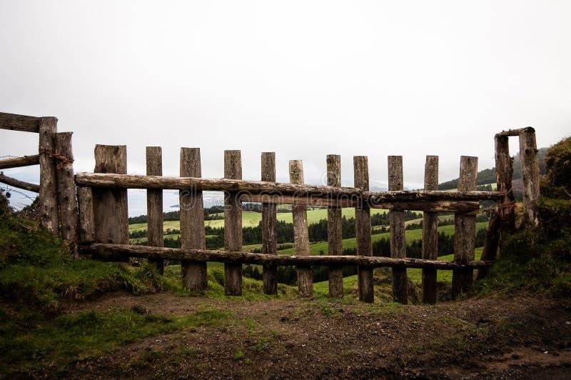 Tir à courte portée d'une barrière en bois avec le champ herbeux et des arbres à l'arrière-plan photos libres de droits