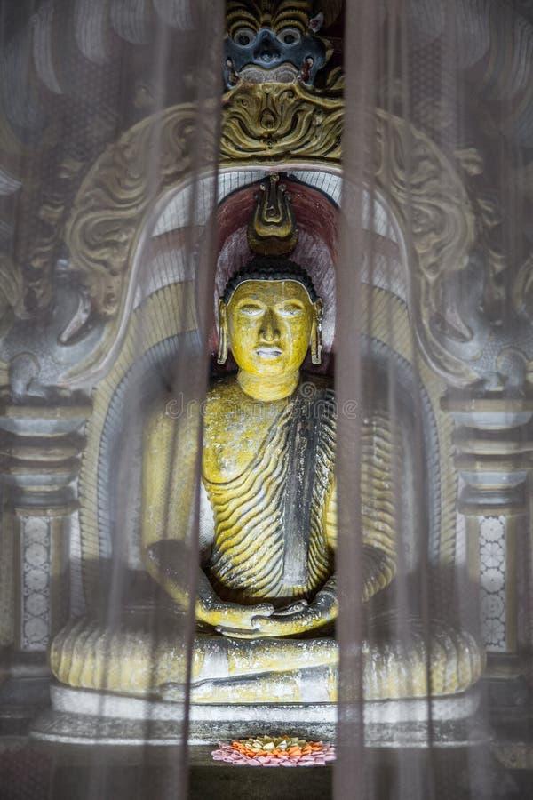 Tir atmosphérique d'un tombeau derrière des rideaux d'une des nombreuses sculptures de Bouddha à l'intérieur de temple de caverne photo libre de droits