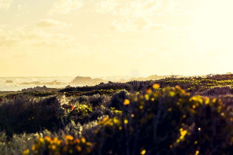 Tir croix-traité par stupéfaction le point le plus le plus au sud du ` s du Cap des Aiguilles, de l'Afrique du Sud et donc de l'A images libres de droits