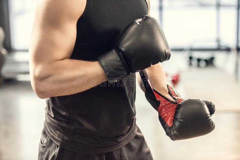 tir cultivé des gants de boxe de port de sportif musculaire dans le gymnase photographie stock