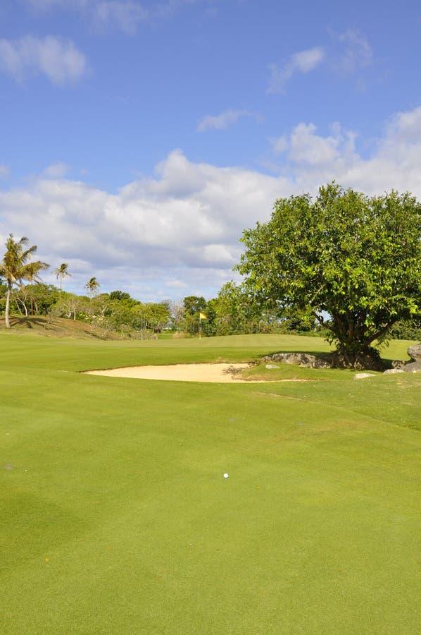 Tir d'approche de terrain de golf photographie stock libre de droits