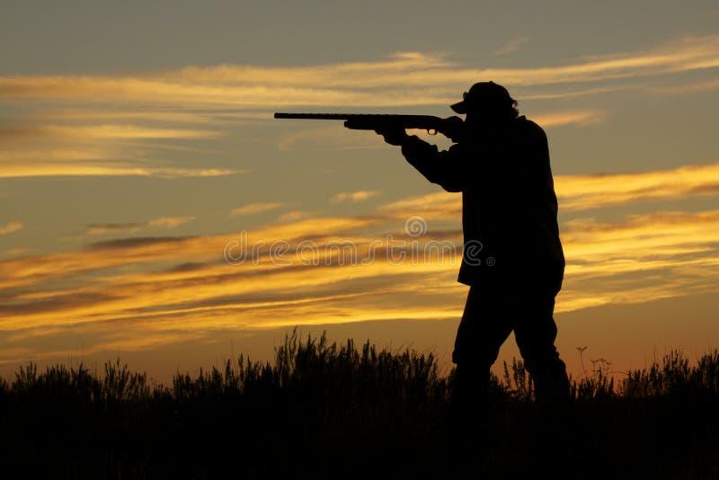 Tir de chasseur dans le coucher du soleil image libre de droits