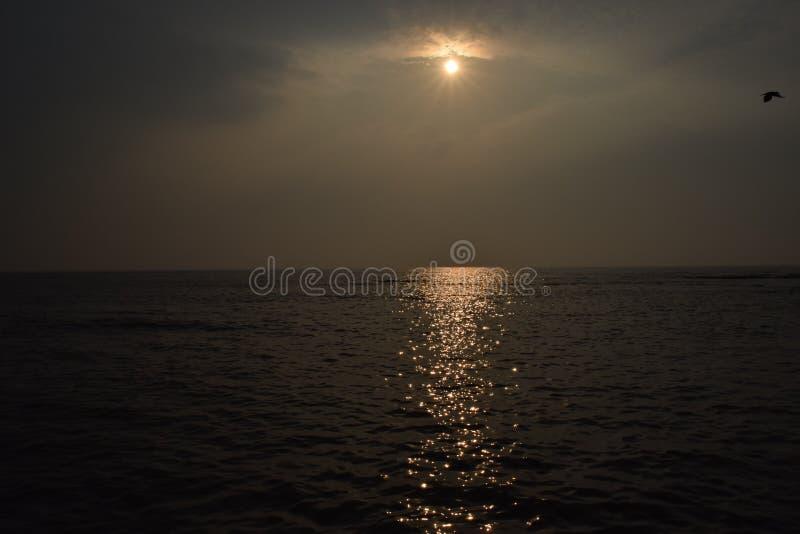 Tir de mer photo libre de droits