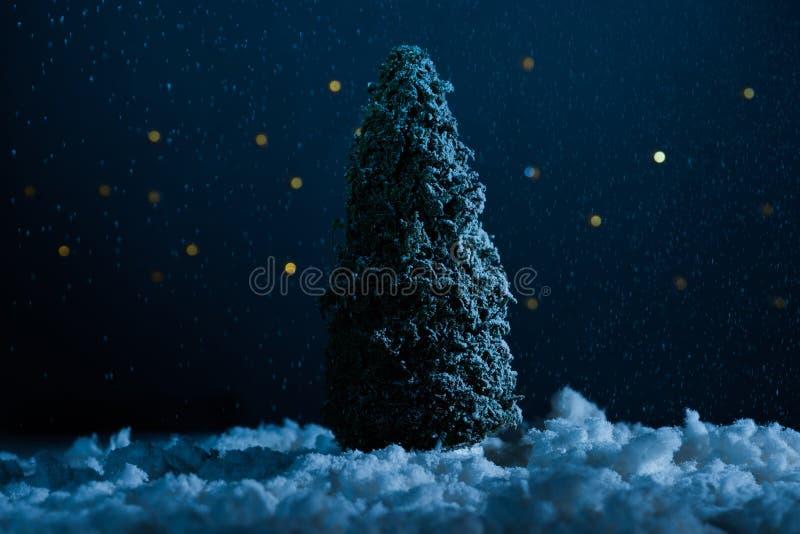 tir en gros plan de la position miniature d'arbre de Noël dans la neige photographie stock libre de droits