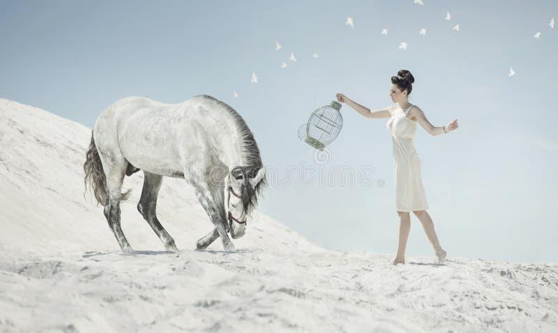 Tir fin de la dame sensuelle avec le cheval photo libre de droits