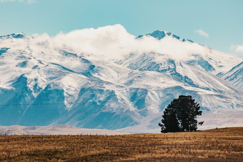 Tir scénique de paysage de montagne du Nouvelle-Zélande au cuisinier Nationa de bâti photo stock