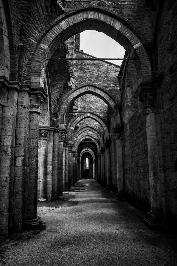 Tir vertical d'un couloir avec des piliers et de type arqué portes chez Abbazia di San Galgano image libre de droits