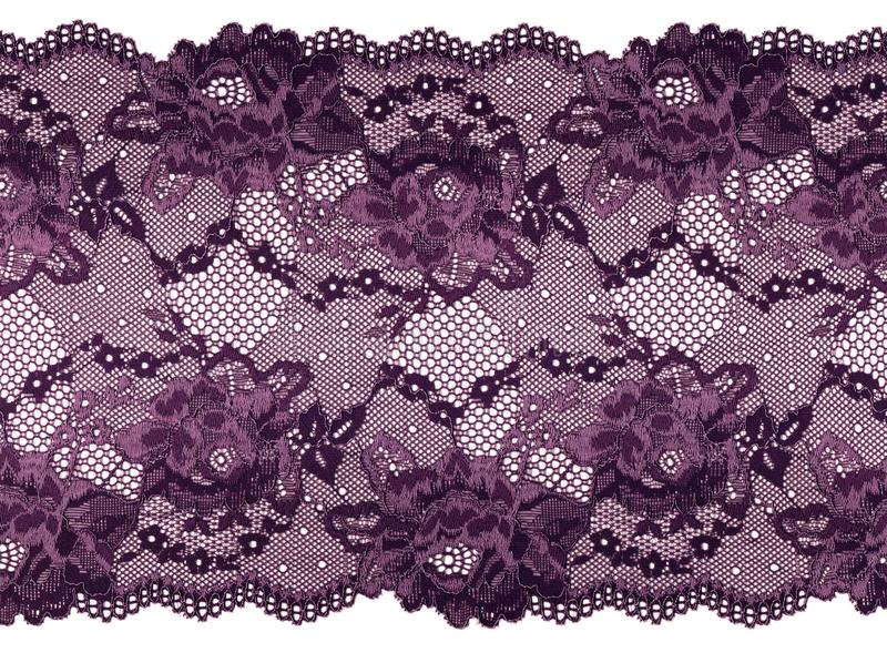 Tira de encaje de la lila en un fondo blanco Cordón elegante con floral imágenes de archivo libres de regalías