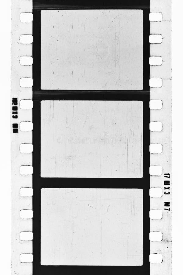 Tira de la película del BW fotografía de archivo