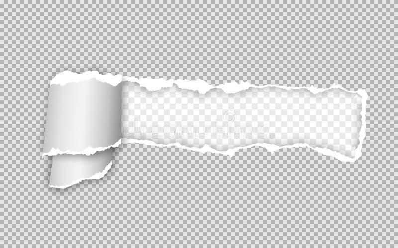 Tira rasgada y torcida realista de papel Borde de papel rasgado Ilustraci?n del vector stock de ilustración