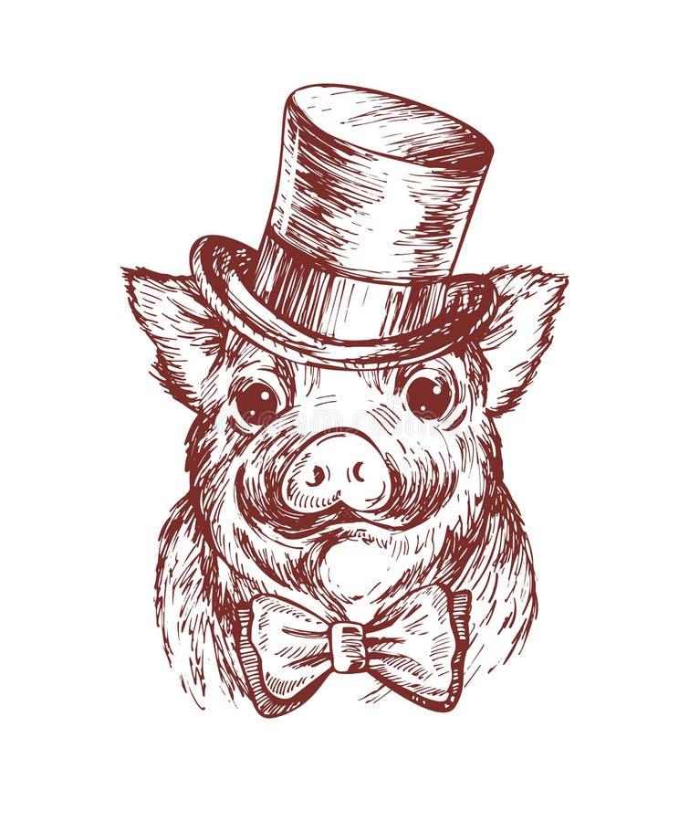 Tiraggio della mano un ritratto di piccolo maiale che porta un cilindro e la cravatta a farfalla Illustrazione di schizzo di vett illustrazione di stock