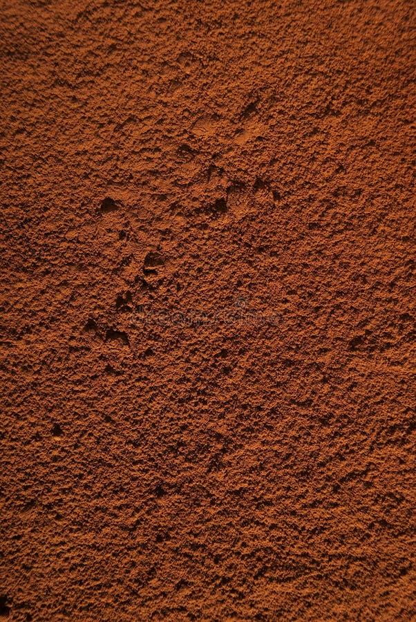 Tiramisu-cacao stock foto's