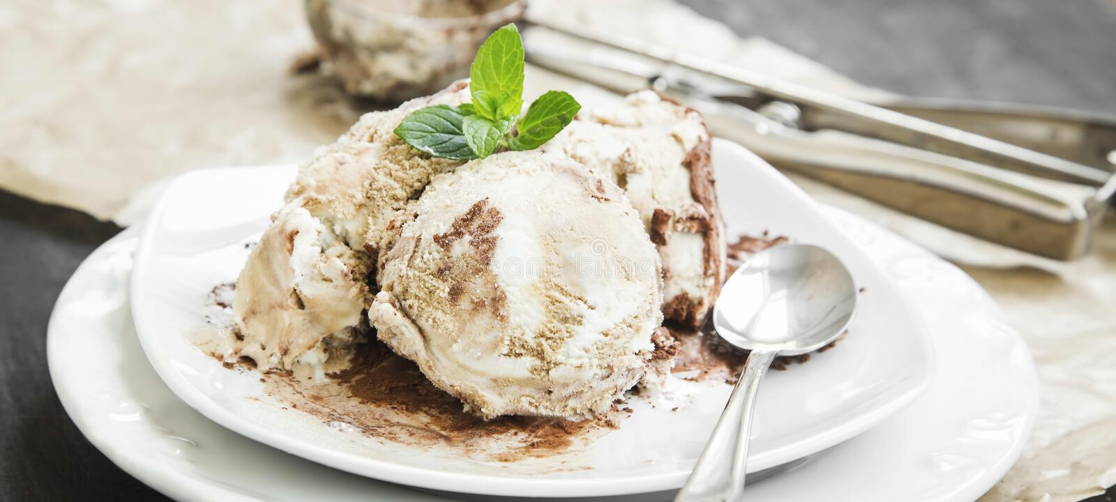 Tiramisu Icecream with Mint in Dessert Plate stock photo