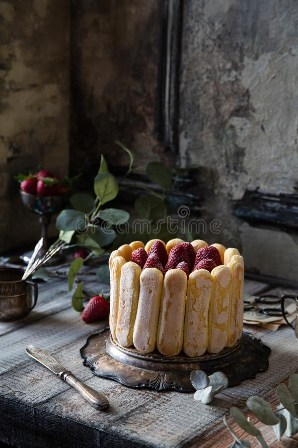 Tiramisu italiano tradicional caseiro do bolo com as cookies em torno do bolo e das morangos na parte superior foto de stock royalty free