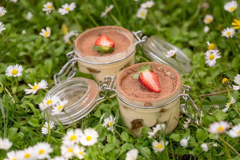 Tiramisu italien délicieux de dessert de ressort photos stock