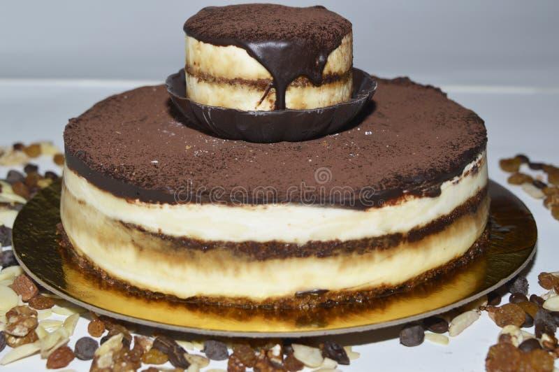 Tiramisu tort z cinamon na czekoladowym fudge i wierzchołku zdjęcia stock