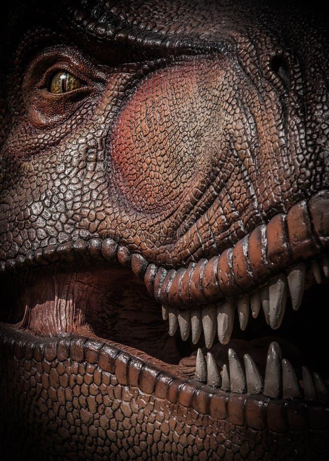 Tirannosauro Rex fotografia stock libera da diritti