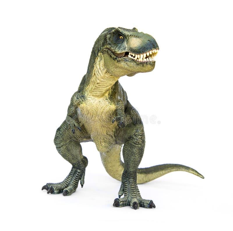 Tirannosauro Rex del dinosauro fotografia stock libera da diritti