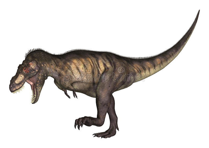 tiranosaurio del ejemplo 3D en blanco ilustración del vector