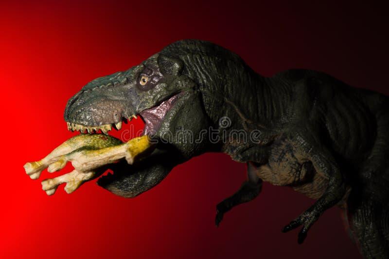 Tiranosaurio que muerde un dinosaurio más pequeño con la luz del punto en la luz principal y roja fotos de archivo libres de regalías