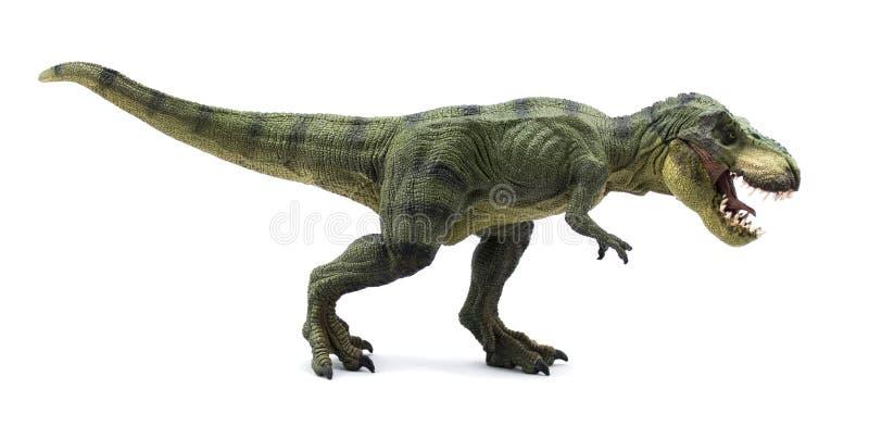 Tiranosaurio Rex imagen de archivo libre de regalías