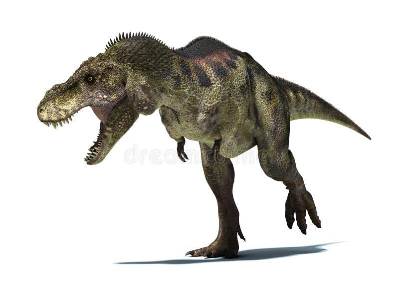 Tiranosaurio Rex, aislado en el fondo blanco con la trayectoria de recortes stock de ilustración