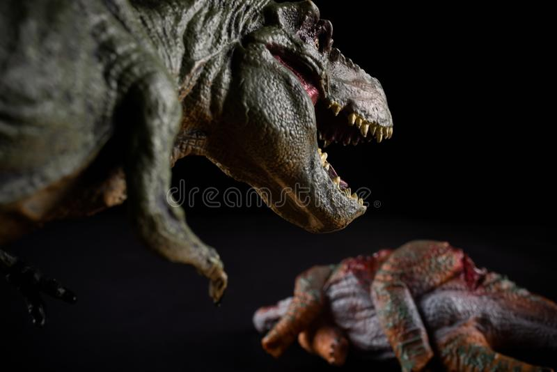 Tiranossauro na frente de um corpo do stegosaurus na obscuridade fotos de stock