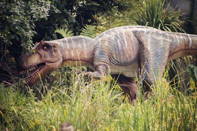 Tiranossauro Rex do dinossauro fotografia de stock